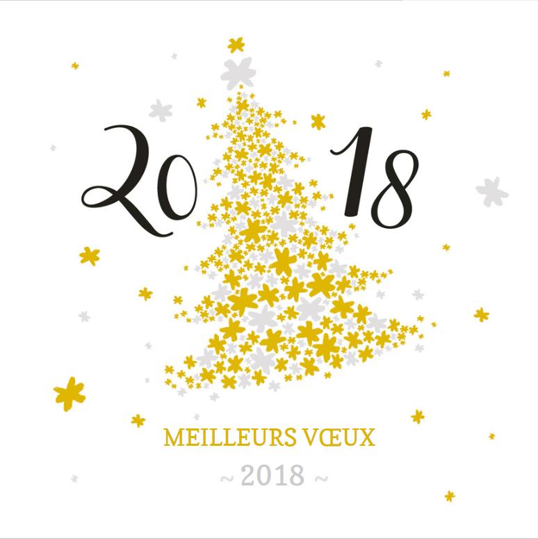 bonne_annee_2018